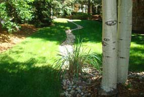 Chase Drain Systems Denver