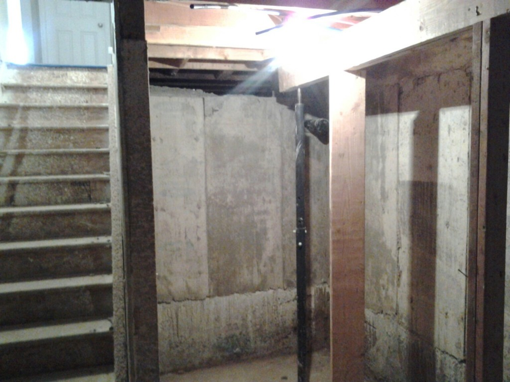 crawl space to basement denver marion street crawl space finishing